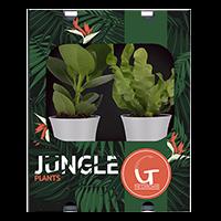 jungle-mix-200x200-2 V2