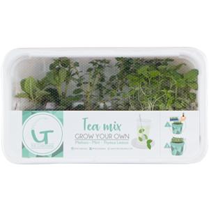 Tea-Mix-300x300